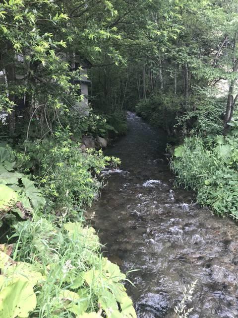 ふらのジャム工房の隣の川
