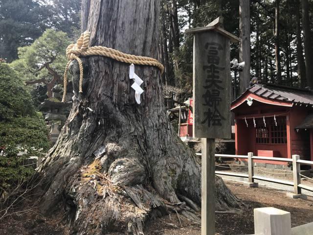パワースポットの浅間神社